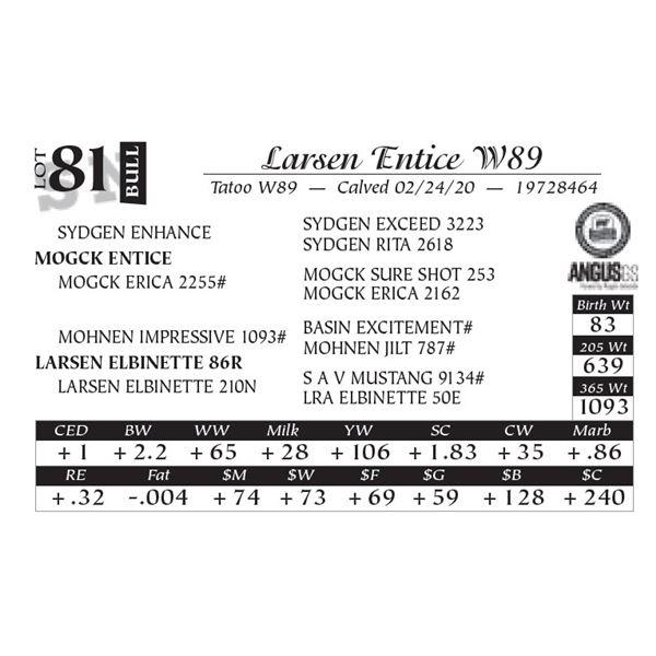 Larsen Entice W89