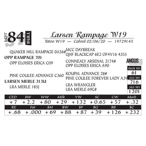 Larsen Rampage W19