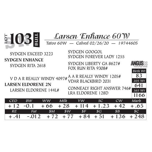 Larsen Enhance 60W