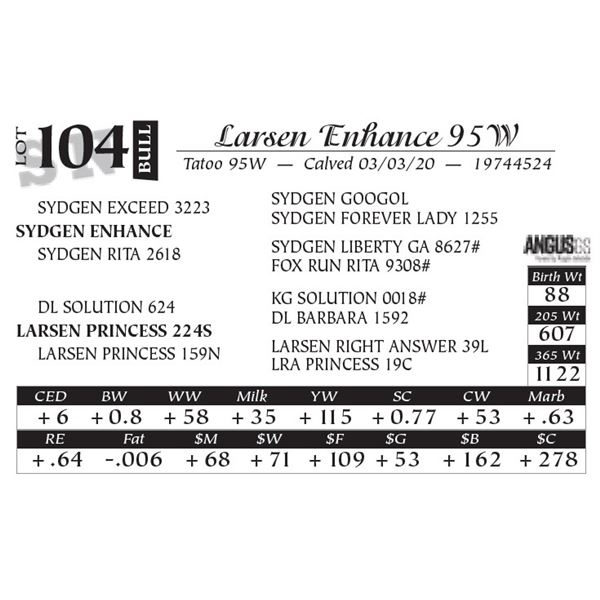 Larsen Enhance 95W