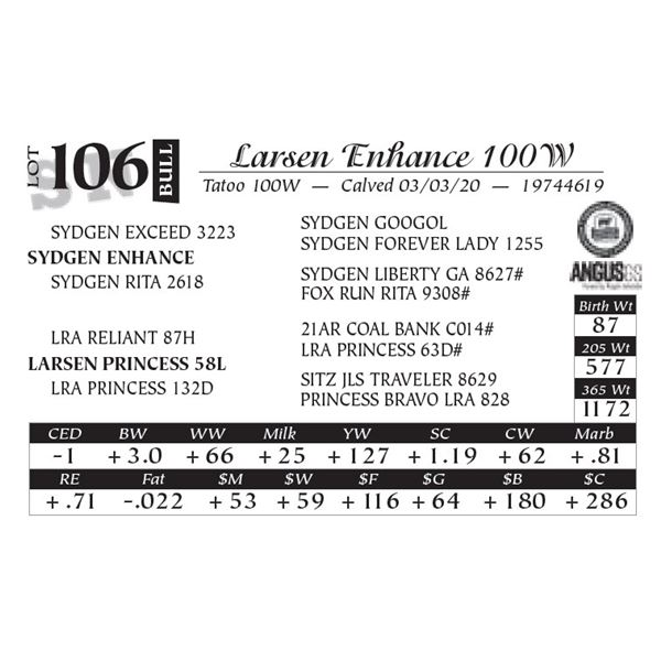 Larsen Enhance 100W
