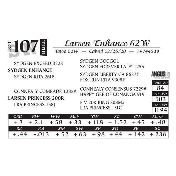 Larsen Enhance 62W