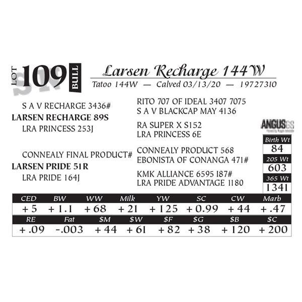 Larsen Recharge 144W