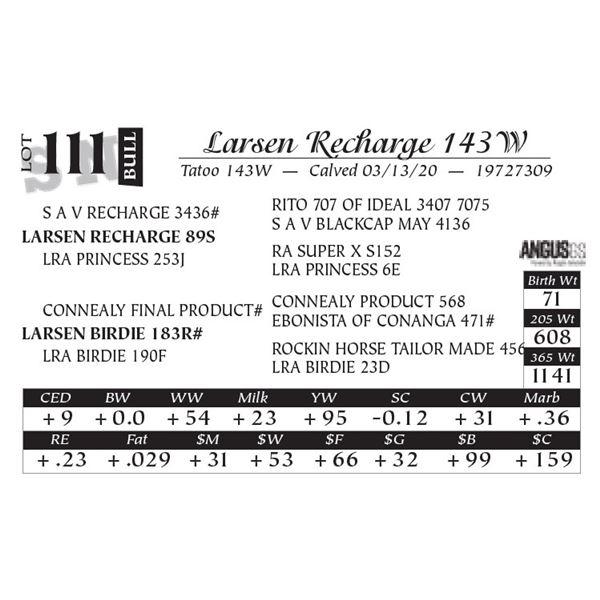 Larsen Recharge 143W