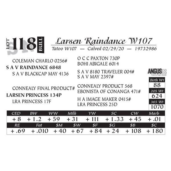 Larsen Raindance W107