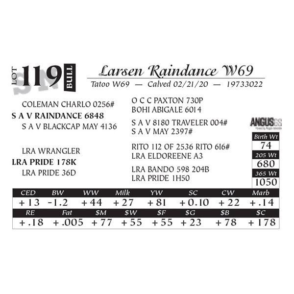 Larsen Raindance W69