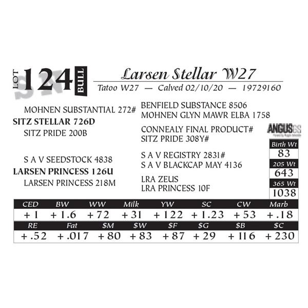 Larsen Stellar W27