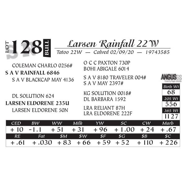 Larsen Rainfall 22W