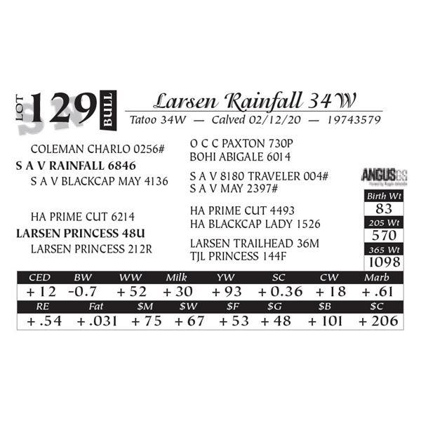 Larsen Rainfall 34W