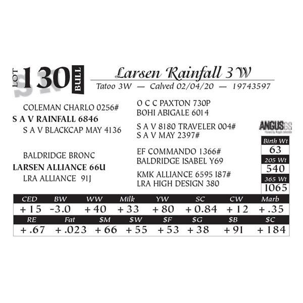 Larsen Rainfall 3W