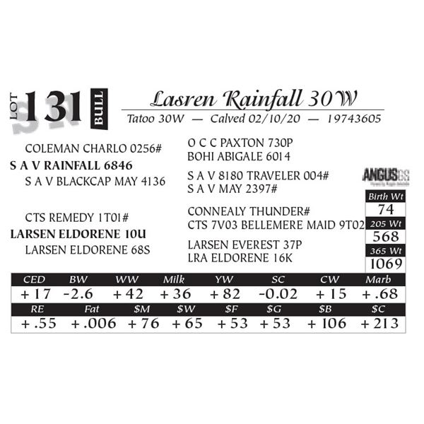 Larsen Rainfall 30W