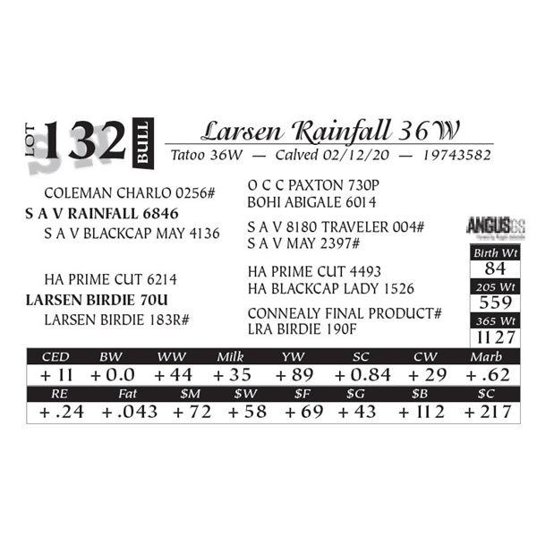Larsen Rainfall 36W