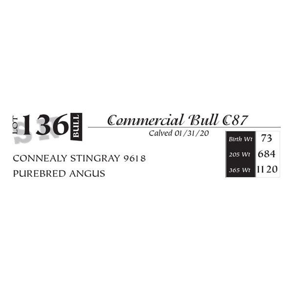 Commercial Bull C87