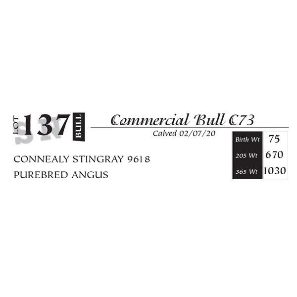 Commercial Bull C73
