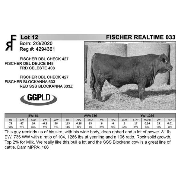 FISCHER REALTIME 033