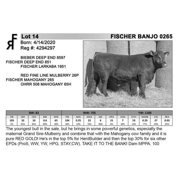 FISCHER BANJO 0265