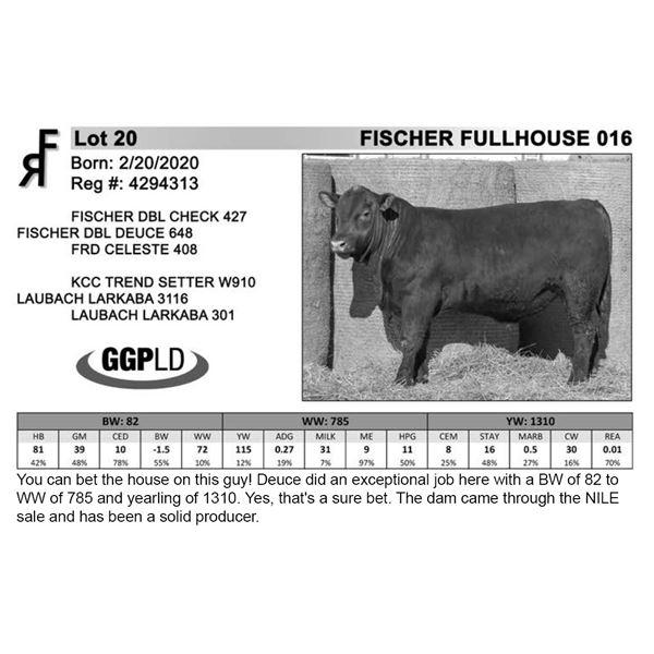 FISCHER FULLHOUSE 016