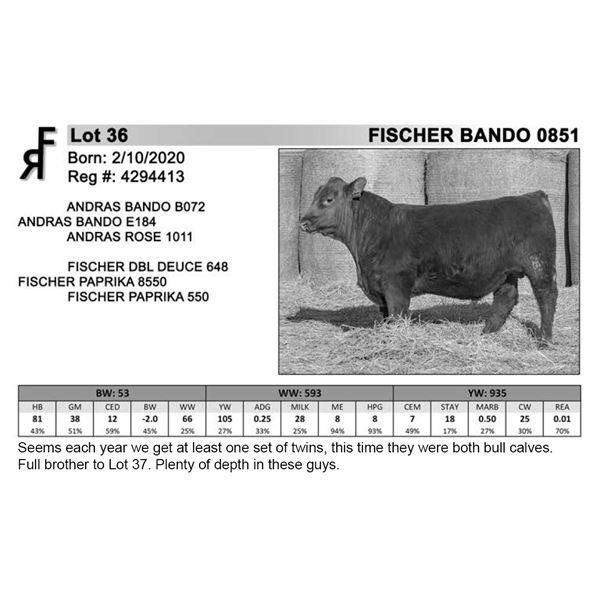 FISCHER BANDO 0851