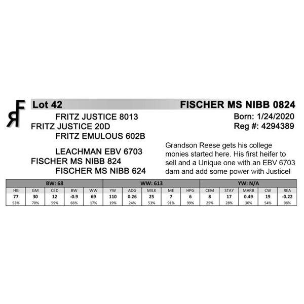 FISCHER MS NIBB 0824