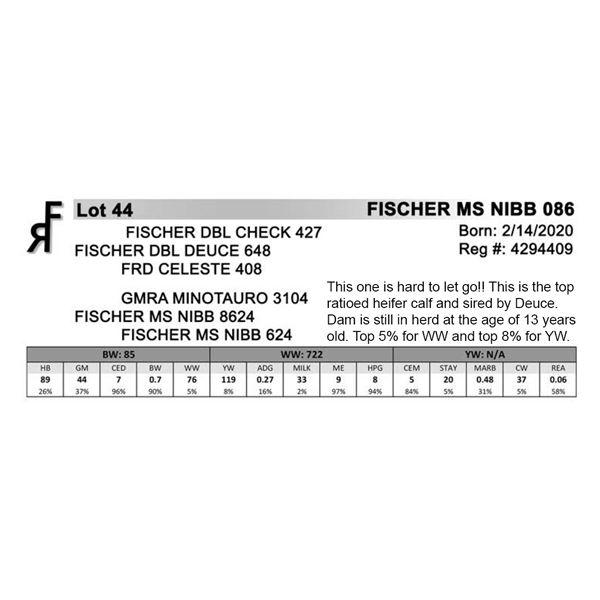 FISCHER MS NIBS 086
