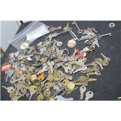 SKELETON AND VARIOUS OTHER KEYS LOT