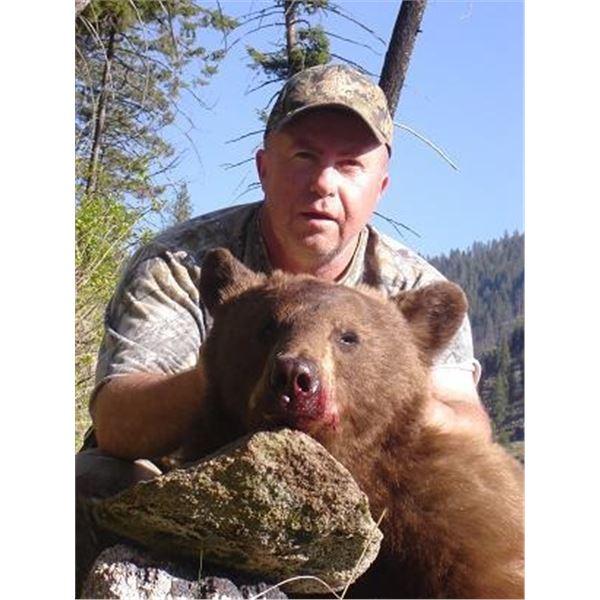 5-day Idaho Wilderness Horseback Black Bear Hunt for 1 Hunter