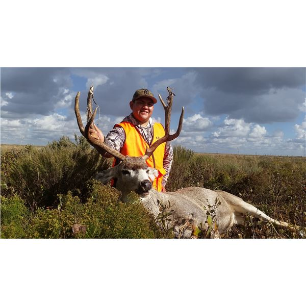 3-Day New Mexico Trophy Pronghorn Antelope or Mule Deer Hunt for 1 Hunter