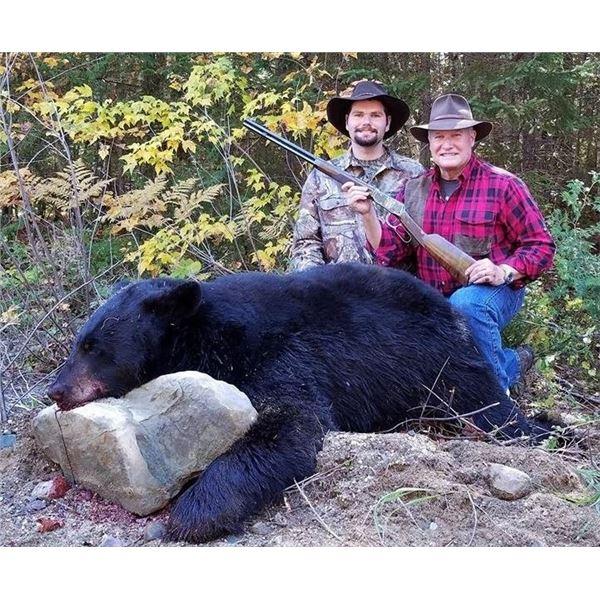 5-Day Maine Fall Baited Black Bear Hunt for 1 Hunter