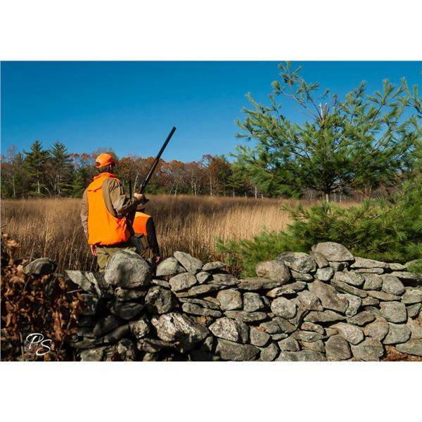 Rhode Island Preserve Pheasant Hunt for 3 with Shooting Gear Package