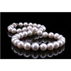 Opulent Silver Champagne South Sea Pearl Necklace