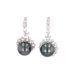 Scarce Tahitian South Sea Pearl 14k Gold Earrings