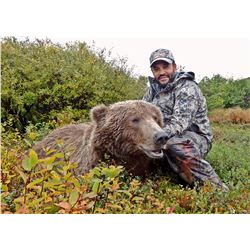 10 Day Wilderness Trophy Brown Bear / Grizzly Bear Hunt