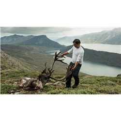 Greenland Musk OX and REINDEER Combo