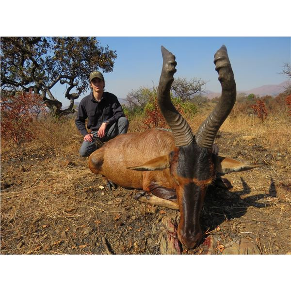 7-day African Safari for two hunters with Graham Sales Safaris