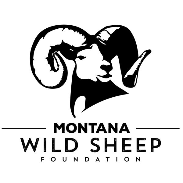 Montana Wild Sheep Foundation Life Membership and YETI Cooler