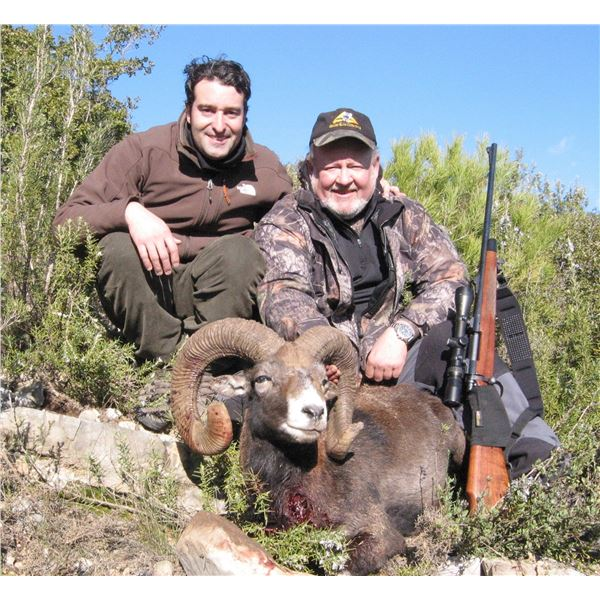 4-day Iberian Mouflon Sheep Hunt with Eurohunts Spain S.L. - Spain is open for vaccinated Americans