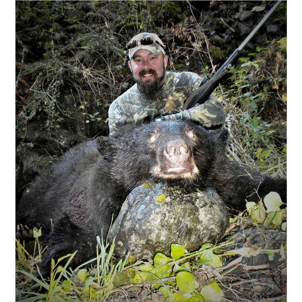Idaho Black Bear Hunt with Yellow Wolf Ranch