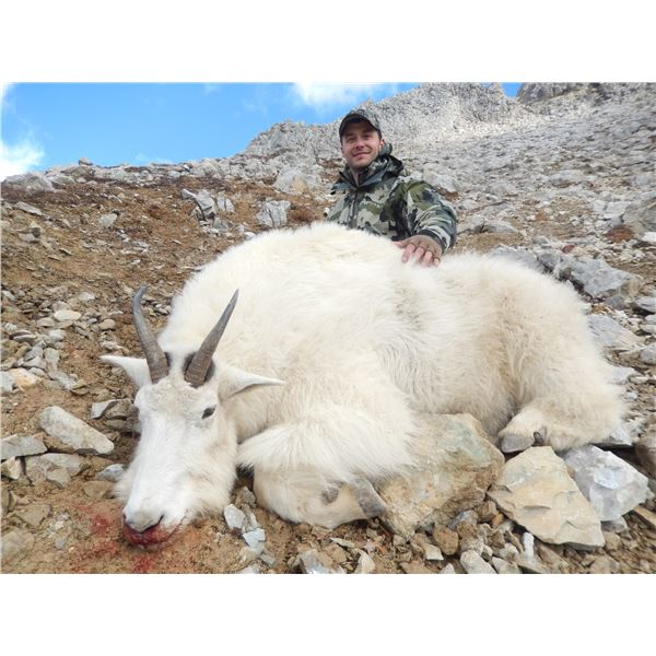 9-day BC Canada Mountain Goat hunt with Terminus Mountain Outfitters