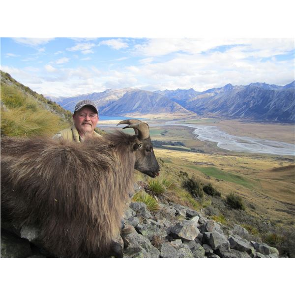 New Zealand Bull Tahr Hunt with Southern Mountain Adventures