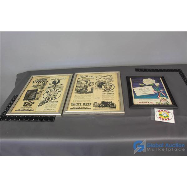 (3) White Rose Framed Advertisements & Sticker