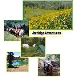 Summer Horse Pack for 2 in the Jarbridge Wilderness
