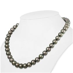 "Dark Green and Peacock True Round Tahitian Pearl Necklace, 18""es, 9.0-9.9mm, AAA Quality"