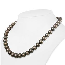 "Dark Silver and Subtle Peacock Round Tahitian Pearl Necklace, 18"", 9.0-11.3mm, AA+/AAA Quality"