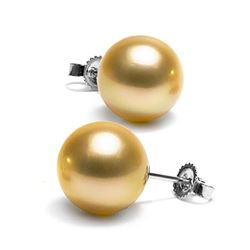 Golden South Sea Pearl Stud Earrings, 10.0-11.0mm