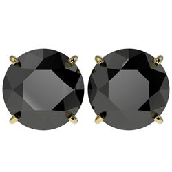 5 ctw Fancy Black Diamond Solitaire Stud Earrings 10k Yellow Gold - REF-82N2F