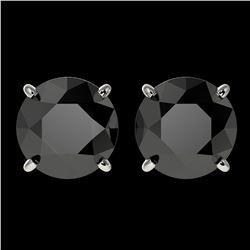 3.18 ctw Fancy Black Diamond Solitaire Stud Earrings 10k White Gold - REF-60R3K