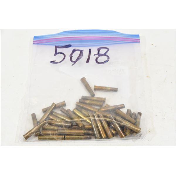 Fired .22 Hornet Brass