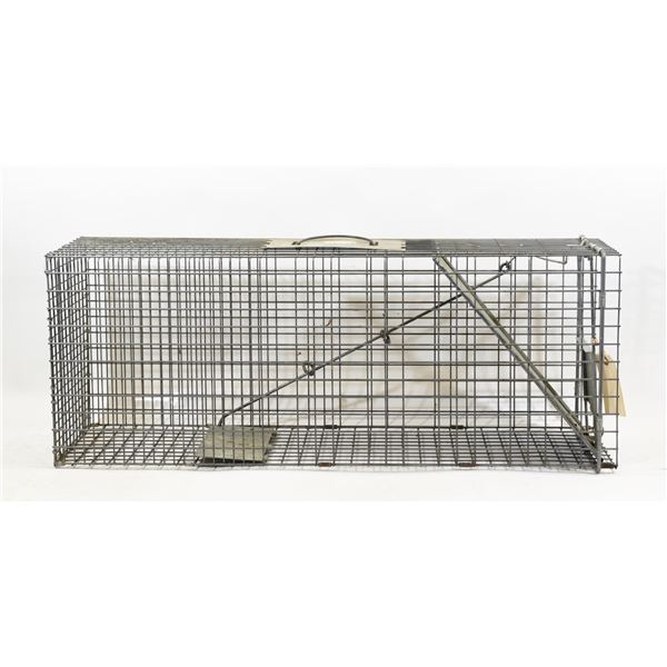 Live Trap for Raccoon