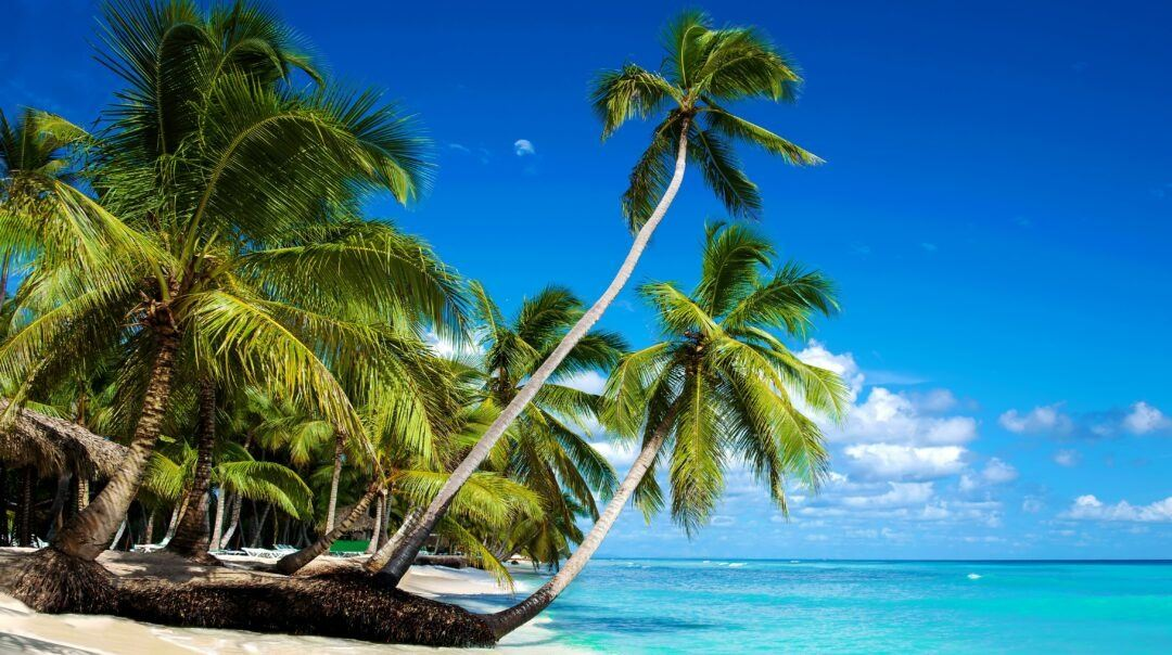 Caribbean Vacation Package