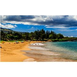 Maui Vacation Package!